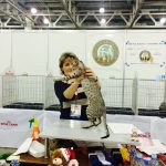 exhibition_landori_20