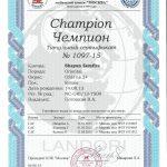 diploma_zemfira_shayan_landori_1