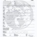 diploma_zemfira_shayan_landori_11