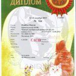 diploma_zemfira_shayan_landori_14