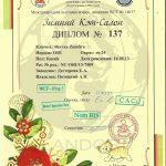 diploma_zemfira_shayan_landori_6