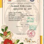 diploma_zemfira_shayan_landori_8