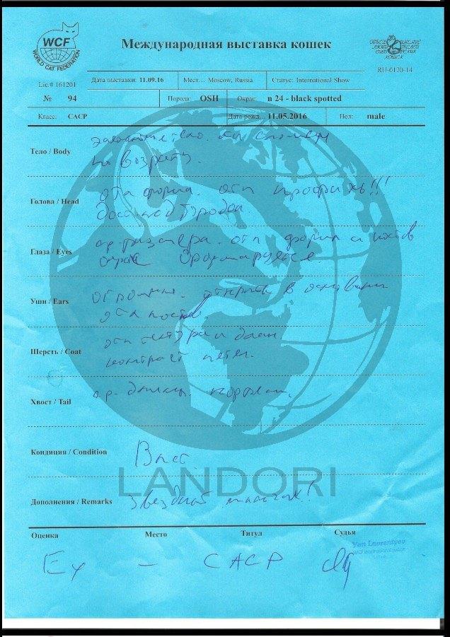 diplomas_silvester_landori_1