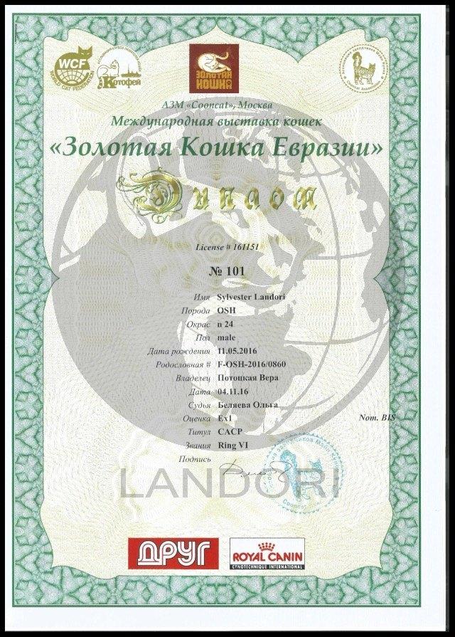 diplomas_silvester_landori_3