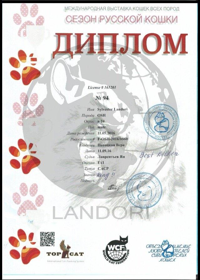 diplomas_silvester_landori_8