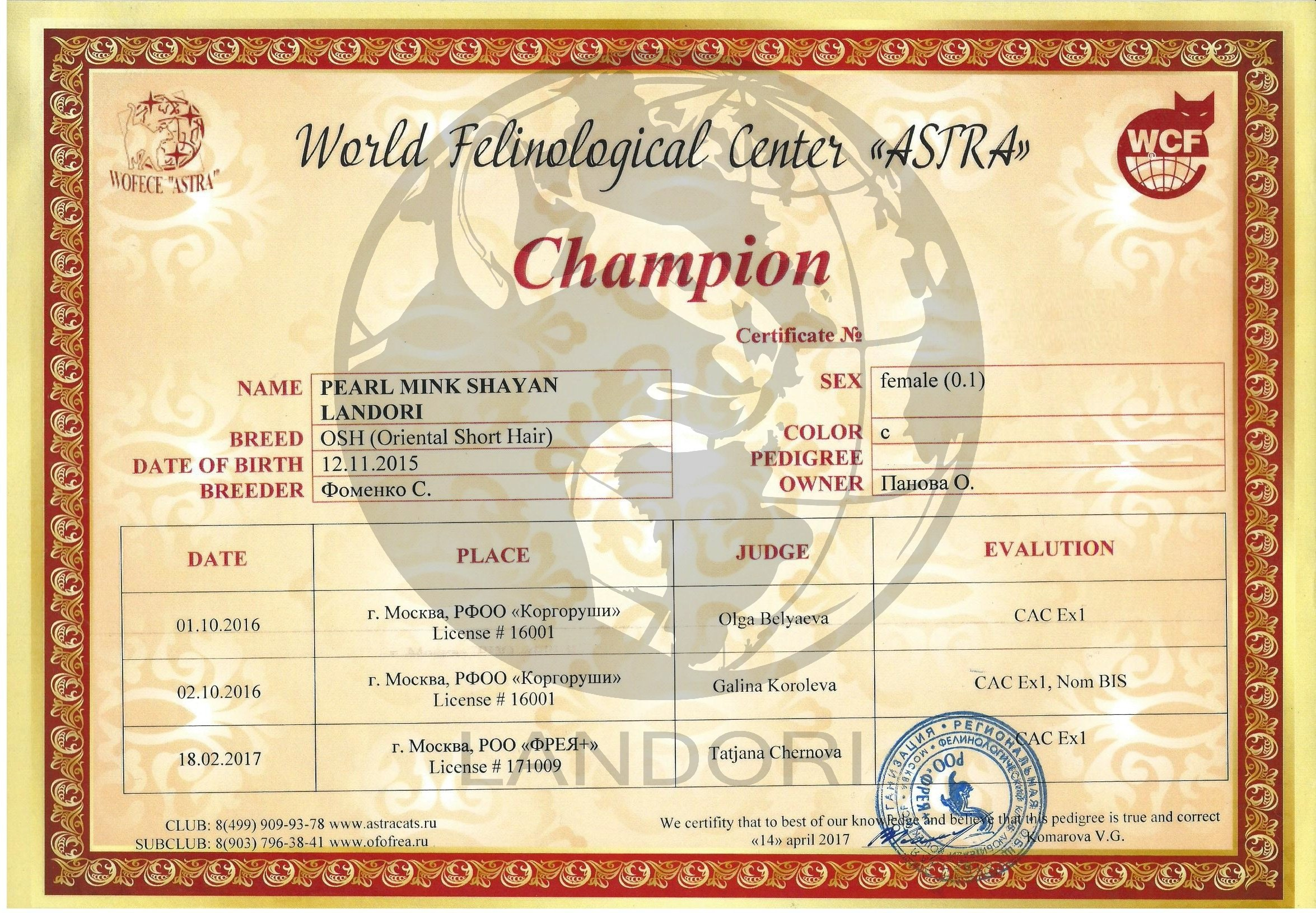 diploma_pearl_mink_champion_1
